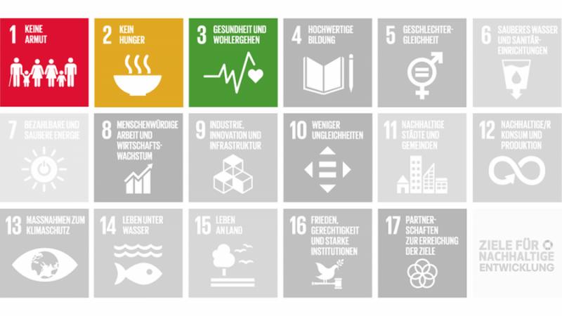 Gesundheit und Soziales SDGs