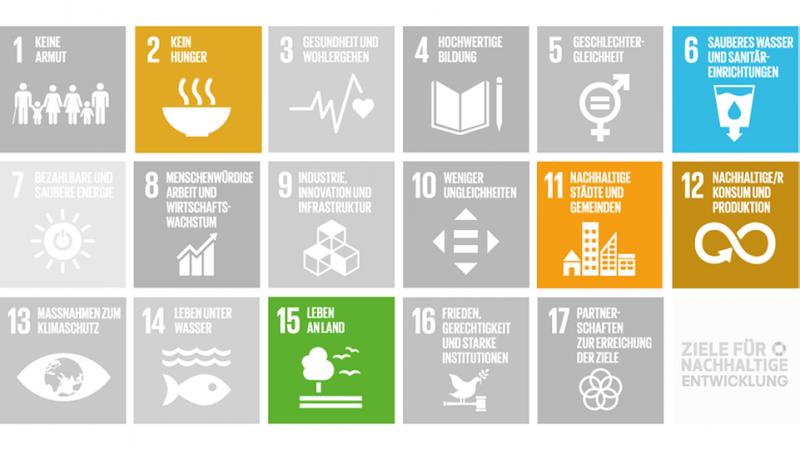 Klimaanpassung SDGs